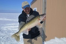 Joe Henry hoists a trophy walleye – typical for Lake of the Woods!