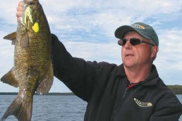 Joe Bucher holds up a huge smallmouth caught on a spinnerbait