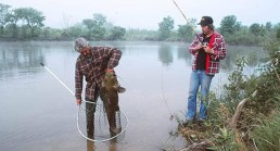 A photograph of the two guys netting a monster flathead.