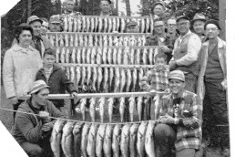 Huge catch of walleyes that helped sell Lindy Rigs