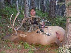 public-land bull elk taken with rifle