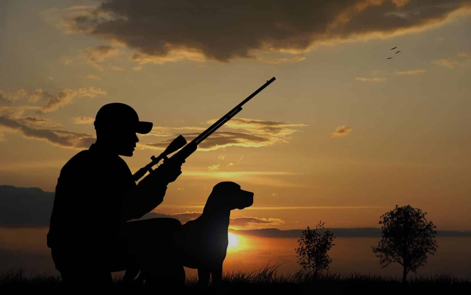 When to Follow, When to Lead: The secrets to handling a good hunting dog