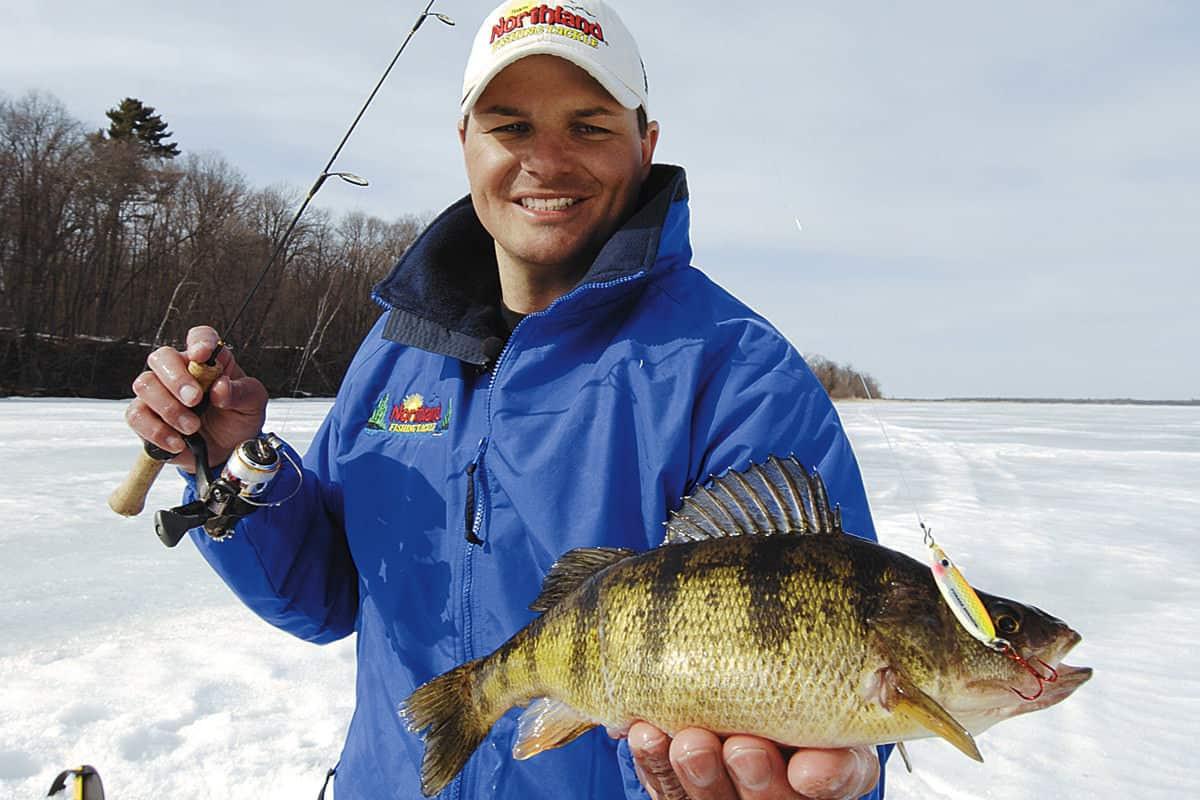 Winter fishing for perch: secrets