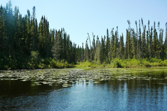 Woman River Camp