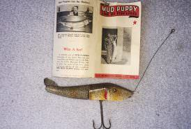 An early Mud Puppy lure; the body is an even 50/50 split. Lures later would have a smaller back half.
