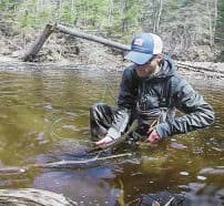 Cradling a steelhead with both hands, as described in the text, makes for a gentle and successful release.