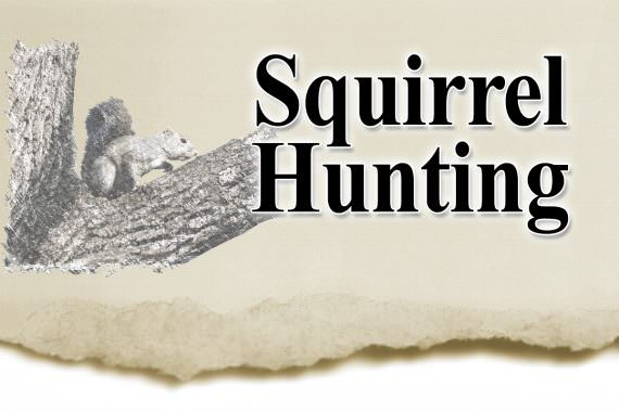 Hunting Summer Squirrels in Missouri