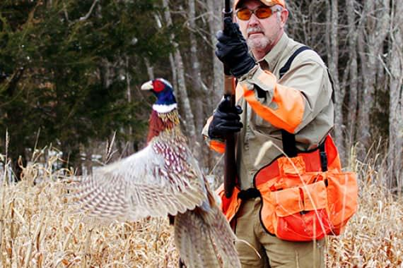 Preserve Hunting More than Scratches Upland Itch