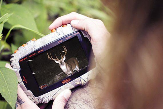 Deer Season Prep: Feed What They Need