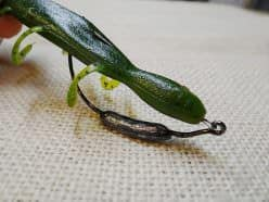 A weedless weighted hook system is a more natural presentation of the Lizard.
