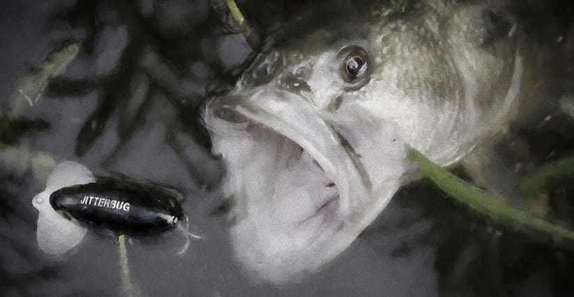 Big bass 39 take the fake 39 skimmed over thick weeds for Twilight zone fish