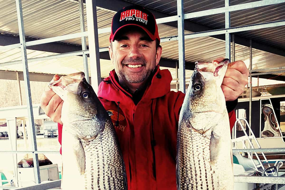 Tapping Norfork for Big-time, Year-around Striper Action - MidWest ...