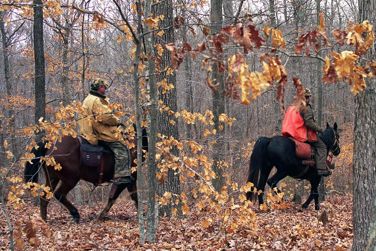 Hounds and Horses for Hunting Squirrels - MidWest Outdoors