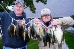 Bluegill fishing | catching bluegill | bluegill | Bluegills | Bull Bluegills