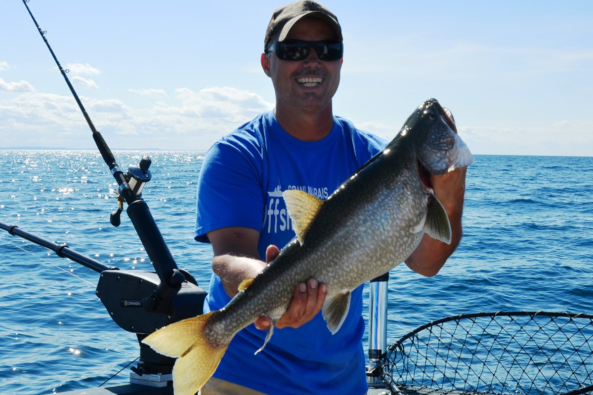 A brief history and rebirth of lake superior lakers for Fish in lake superior