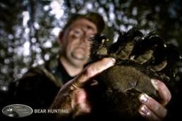 Ontario spring bear hunting | Canada spring bear hunting | Bear hunting destinations | Bear hunting trips | Best bear hunting destinations