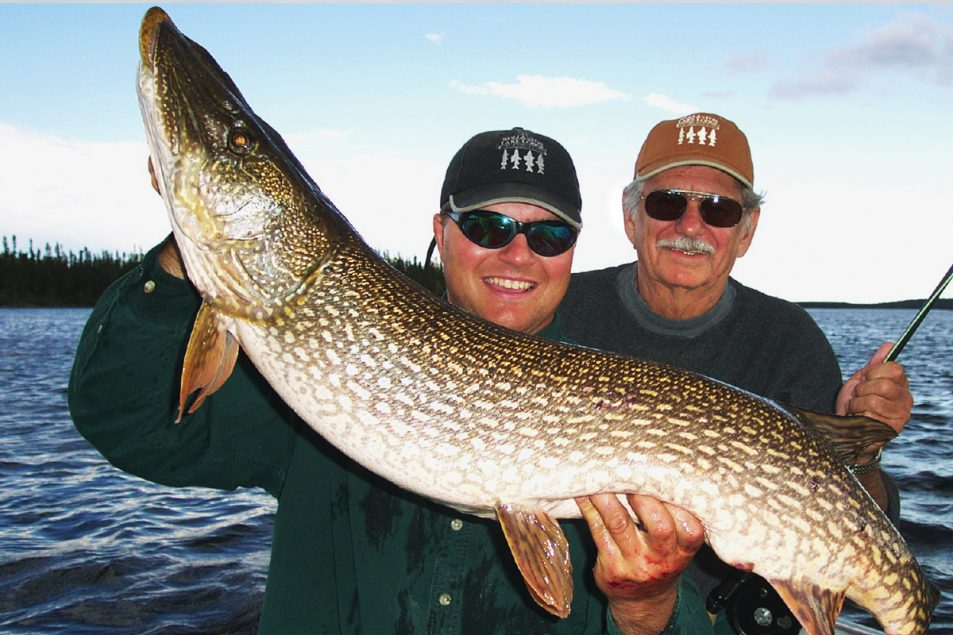 massive Canadian northern pike | Fly fishing for northern pike | Dave Csanda | northern pike | Canadian Northern Pike fishing |