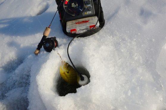 How to use flashers | Ice fishing electronics information | How to use ice fishing flasher | Cant figure out how to use flasher for ice fishing | Vexilar Ice Fishing Flasher tips
