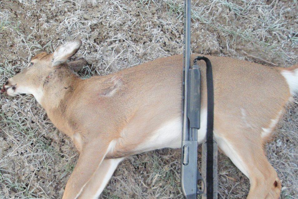 deer hunting december | How to hunt deer during December | Winter deer hunting tips | Best december deer hunting tips